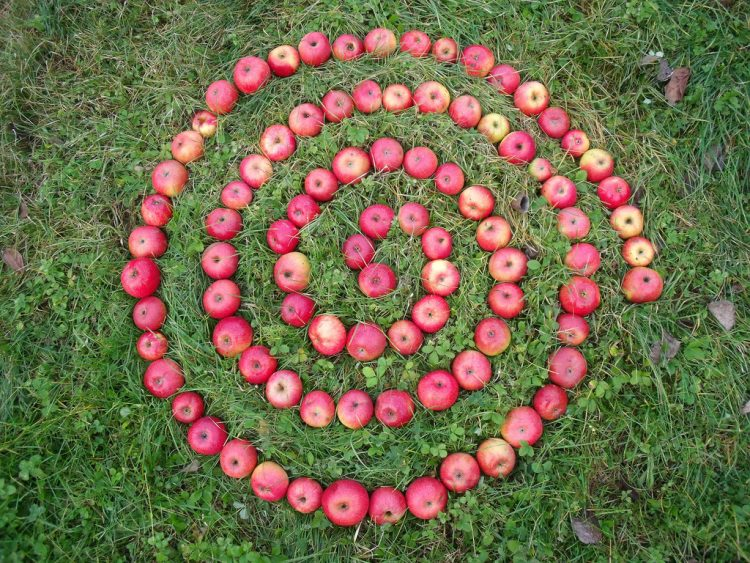 Mabon apples