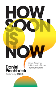 Daniel Pinchbeck How Soon Is Now book cover
