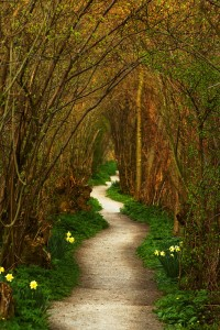 Richard Cullen the_winding_path_a