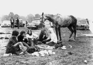 glastonbury festi horse_002